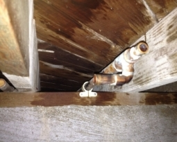 Copper Repiping in Norwalk – Stolen Pipes??